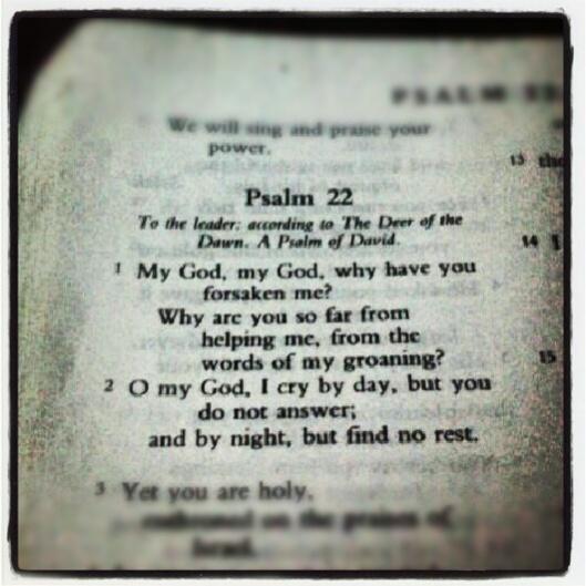 Thinking Psalm 22
