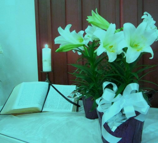 easter lily2